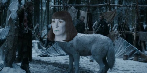 Anjelica is a wolf