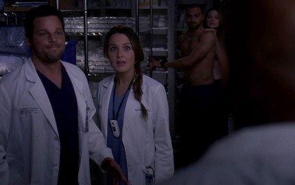 Greys Anatomy 1014 SEX CLOSET